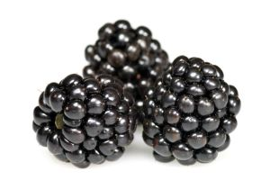 Group of blackberries isolated on white background.